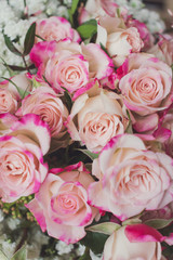 Close up view of beautiful blooming pink roses in a bouquet, floral background, detail