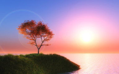 3D maple tree against a sunset sky