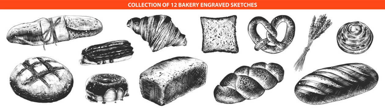 Vector engraved style bakery and bread collection for posters, decoration and print, logo. Hand drawn sketches of monochrome isolated on white background. Detailed vintage woodcut style drawing.