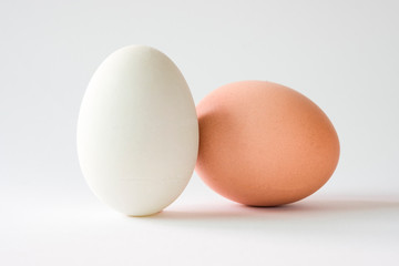Isolated of chicken egg and duck egg on white background.-Image.
