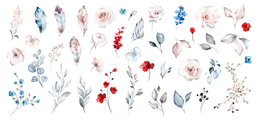 Set watercolor elements of roses collection garden red, blue flowers, leaves, branches, Botanic  illustration isolated on white background.