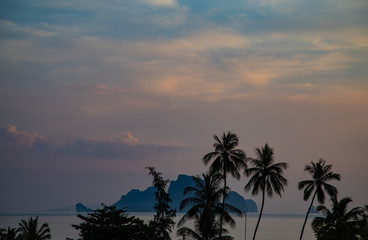 Palm trees and tropical island on evening sky background at sunset