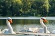 Schwanenboote Schwanenteich Stadtpark Zwickau