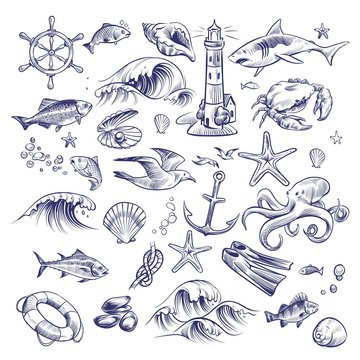 Hand drawn marine set. Sea ocean voyage lighthouse shark crab octopus starfish knot crab shell lifebuoy collection