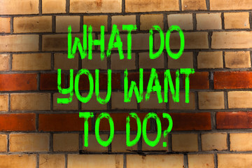 Word writing text What Do You Want To Doquestion. Business photo showcasing Meditate Relax Vacation Travel Desire Brick Wall art like Graffiti motivational call written on the wall