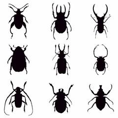 vector bug silhouettes - Vector