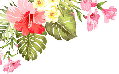 The flower paradise. Summer illustration with bouquet of green palm leaves and blooming flowers. Beautiful set for vacation design on white background. Vector illustration.