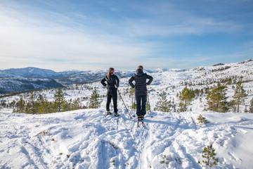 Skiing in Northern Norwegian mountains - Sausheia