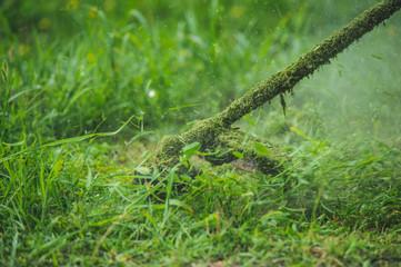 Printed kitchen splashbacks Bonsai Grass trimmer cutting grass