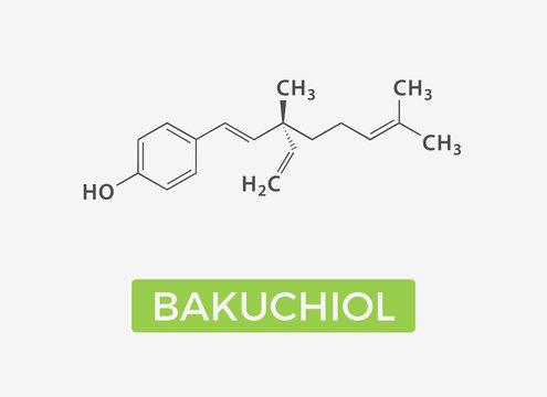 Bakuchiol - chemical formula - Natural Retinol