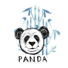 Hand drawn panda with bamboo. Graphic illustration isolated on white. Panda Logo Design Inspiration.