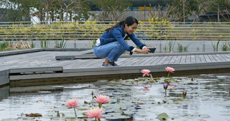 Woman take photo on waterlily water pond in park