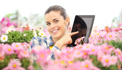 smiling woman in garden of flowers daisies touch screen of digital tablet, spring concept and internet search