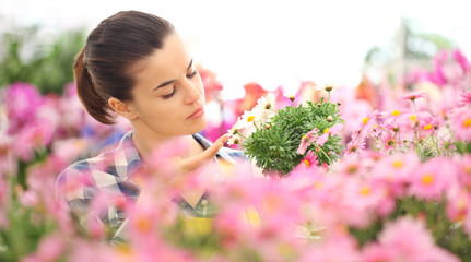 woman in garden of flowers daisies touch daisy, spring concept