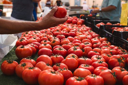 hand picking up fresh organic tomatoes in an outdoore market in spain