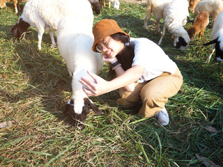 girl taking photograph with sheep