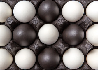 Close-up creative pattern of colored black and white eggs in a black cardboard box. Easter composition. Flat lay