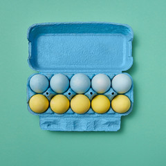 A row of blue and a row of yellow Easter eggs in a carton on a green background with copy space. Easter composition.
