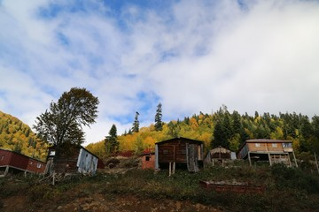 Autumn forest and village photos.savsat/artvin turkey