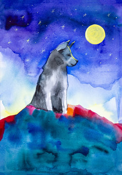 A lone wolf sits on top of a mountain in the light of a full moon and a clear starry sky. Watercolor illustration