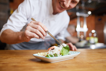 Closeup of professional chef plating Asian dish in restaurant kitchen, copy space