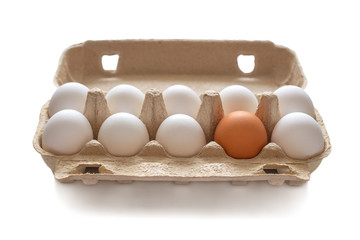 Cardboard box with chicken eggs