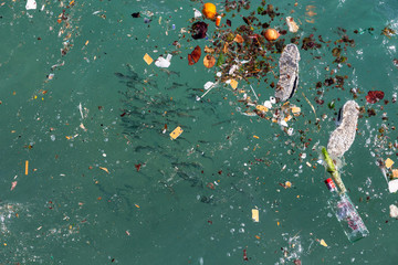 Plastic in ocean. Shoal of fish and plastics and trash in sea. Wall mural