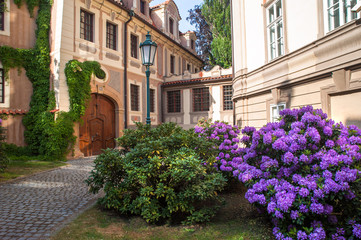 Picturesque Kolowrat Garden in Prague with Blooming Rhododendrons