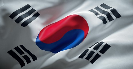 South Korean flag. South Korea.