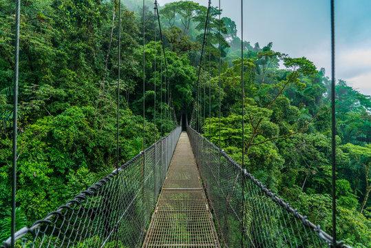 Costa Rica arenal hanging bridge
