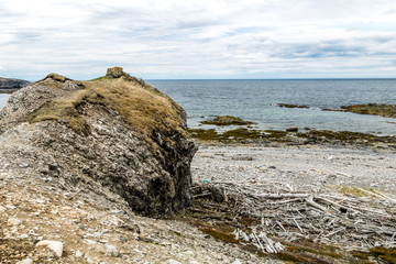 Limestone cliffs, rock and driftwood strewn beaches and flora in the hills in Bellbuns, Newfoundland, Canada