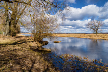 Rzeka Supraśl i Narew. Złotoria nad Narwią. Wiosna w dolinie Narwi i Supraśli. Podlasie, Polska