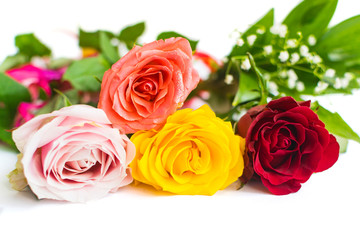 Colorful roses isolated on white background with place for text