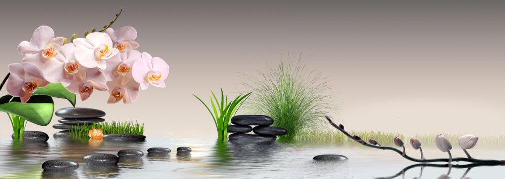Wandbild mit Orchideen, Gras und Steinen im Wasser