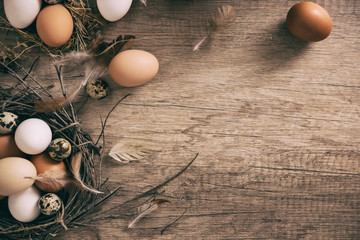 Rustic plank with different kind of  eggs in nest, poultry farm concept
