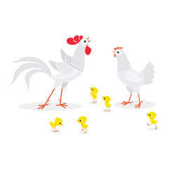 Illustration of white chicken family isolated on white background