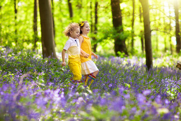 Kids in bluebell woods. Children play in park.