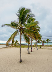 Beach in Puerto Villamil, Isabela or Albemarle Island, Galapagos, Ecuador