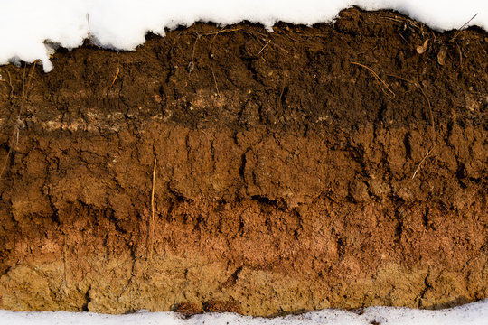 Soil cut-sandstone, stones, clay, sand structure and layers. slice of sand with layers of different structures. Layers of sedimentary sandstone rock.