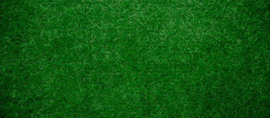 Panoramic Artificial green Grass Background
