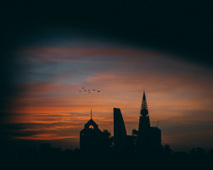 silhouette photography of flock of flying birds above buildings