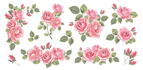 Bouquets of blooming roses. Set of isolated objects. Vector image.