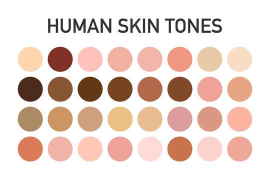 Human skin tone color palette set isolated on transparent background. Art design. Vector illustration.