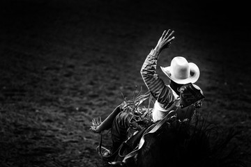 Monochrome rodeo cowboy in a white hat riding a bronco in ththe spotlight