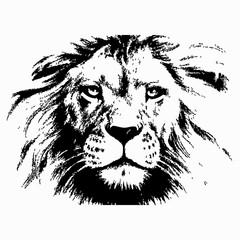 Lion head silhouette vector illustration