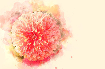 Close up beautiful flower blooming on watercolor painting background.
