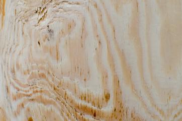 close-up, wood texture, cut of wood,