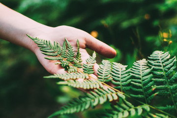 Young Girl Touching Holding Fern Leaf In Summer Park Forest. Close Up Of Female Hand. Concept Of Nature, Environment Care