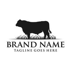 angus cow logo