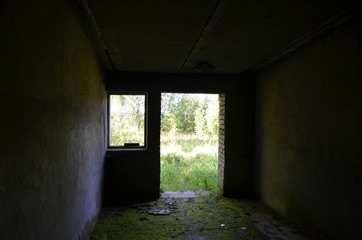 View of the green field and trees from the dark destroyed old brick building with a mossy floor through the door and window